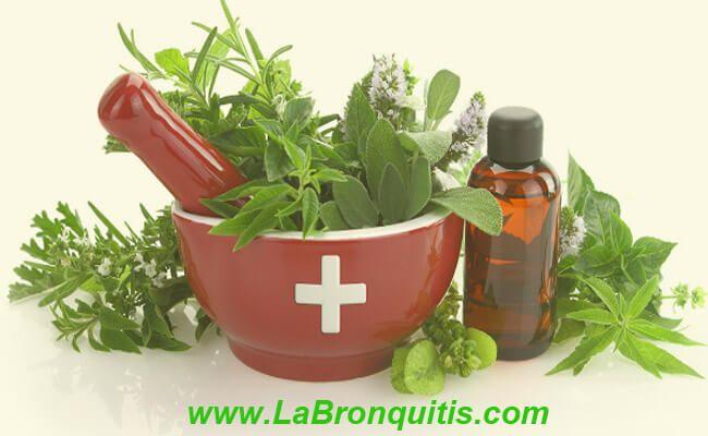 Hierbas medicinales para aliviar la bronquitis
