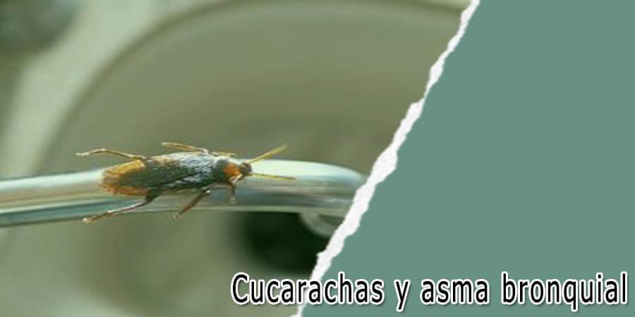 Cucarachas y asma bronquial